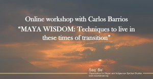 Online_workshop_Carlos_Barrios-1